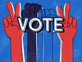 voter image
