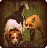 Dog Wont Hunt image