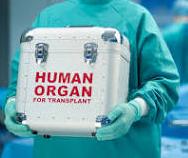 human-organ-transplants.jpg