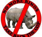 no more rinos